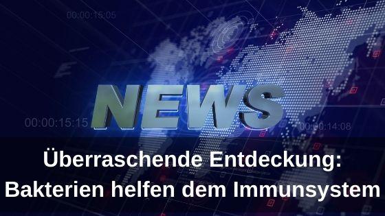 Überraschende_Entdeckung_Bakterien_helfen_dem_Immunsystem