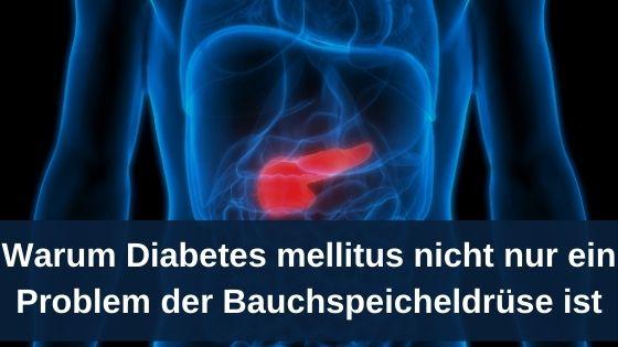 Warum Diabetes mellitus nicht nur ein Problem der Bauchspeicheldrüse ist